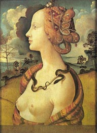 Portrait of Simonetta Vespucci, before 152 by Piero di Cosimo | Painting Reproduction
