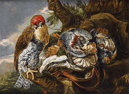 A Hawk Bearing Trophy Hunting, Undated by Pieter Boel | Painting Reproduction