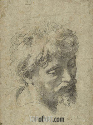 Raphael | Study for the 'The Transfiguration', undated