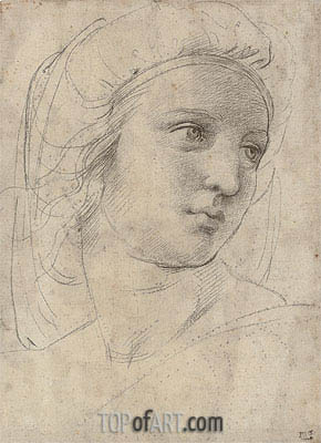 Head of a Muse, undated | Raphael| Painting Reproduction