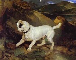 Jocko with a Hedgehog, 1828 by Landseer | Painting Reproduction