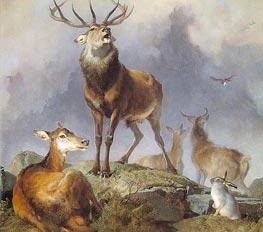 Scene in Braemar - Highland Deer, 1857 by Landseer | Painting Reproduction
