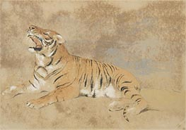 Tiger, undated by Landseer | Painting Reproduction