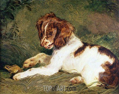 A Puppy teasing a Frog, 1824 | Landseer | Painting Reproduction