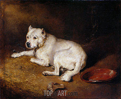 A Staffordshire Bull Terrier, c.1850/70 | Landseer | Painting Reproduction