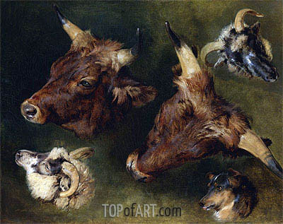 Studies of Cattle and Sheep, 1868 | Landseer | Painting Reproduction