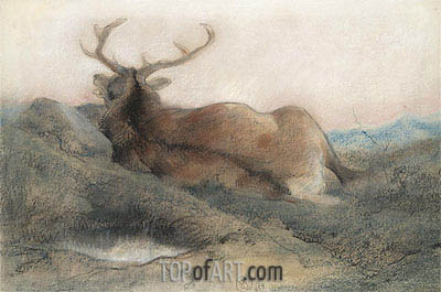 A Stag at Tarbet, 1858 | Landseer| Painting Reproduction