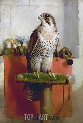 Landseer | Falcon, 1837
