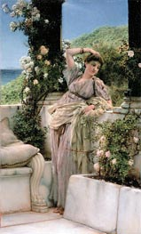 Rose of All Roses, 1885 by Alma-Tadema | Painting Reproduction