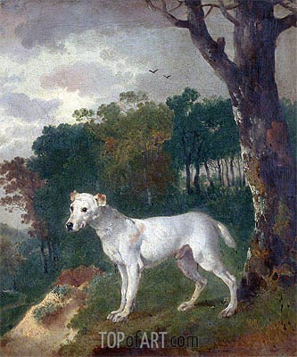 'Bumper', a Bull Terrier, 1745 | Gainsborough | Painting Reproduction