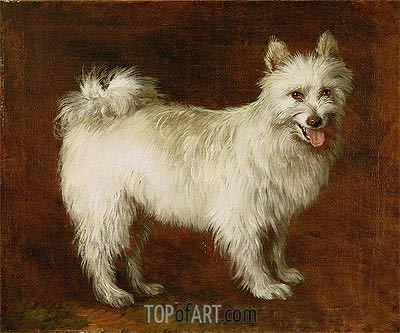 Spitz Dog, c.1760/70 | Gainsborough | Painting Reproduction