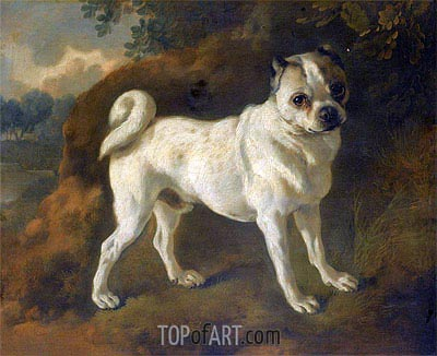 A Pug, c.1780/85 | Gainsborough| Painting Reproduction