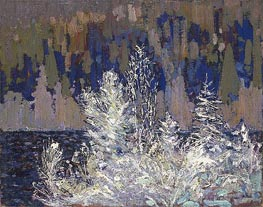 Frost-laden Cedars, Big Cauchon Lake, c.1915/16 von Tom Thomson | Gemälde-Reproduktion