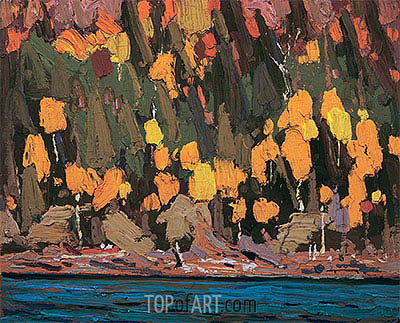 Birches and Cedar, Fall, 1915 | Tom Thomson| Painting Reproduction