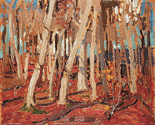 Maple Woods, Bare Trunks, 1915 | Tom Thomson | Painting Reproduction