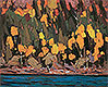 Birches and Cedar, Fall   Tom Thomson