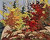 Autumn Scene   Tom Thomson
