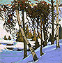 Early Snow | Tom Thomson