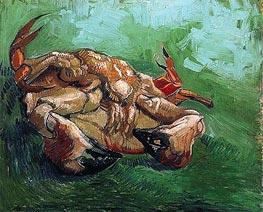 Krabbe auf dem Rücken, 1889 von Vincent van Gogh | Gemälde-Reproduktion
