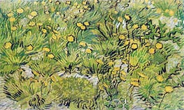 A Field of Yellow Flowers, 1889 by Vincent van Gogh | Painting Reproduction