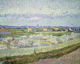 Peach Blossom in the Crau | Vincent van Gogh | veraltet
