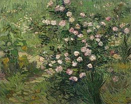 Rosebush in Blossom, 1889 by Vincent van Gogh | Painting Reproduction