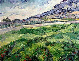 Green Wheat Field | Vincent van Gogh | Painting Reproduction