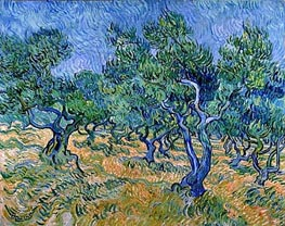 Olive Grove, 1889 von Vincent van Gogh | Gemälde-Reproduktion