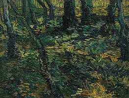 Undergrowth with Ivy, 1889 by Vincent van Gogh | Painting Reproduction