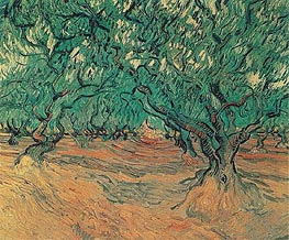 Olive Trees, 1889 by Vincent van Gogh | Painting Reproduction