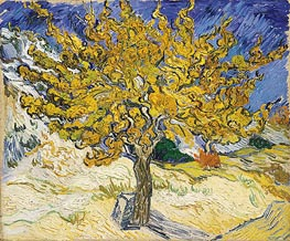 The Mulberry Tree, 1889 von Vincent van Gogh | Gemälde-Reproduktion