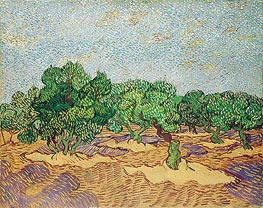 Olive Orchard | Vincent van Gogh | Painting Reproduction