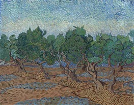 Olive Grove | Vincent van Gogh | Painting Reproduction