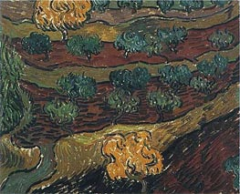 Olive Trees against a Slope of a Hill | Vincent van Gogh | Painting Reproduction