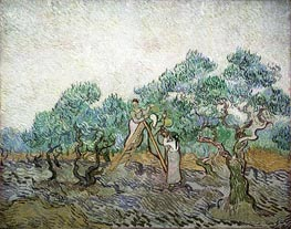 The Olive Orchard, 1889 by Vincent van Gogh | Painting Reproduction
