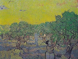 Olive Grove with Picking Figures, 1889 by Vincent van Gogh | Painting Reproduction