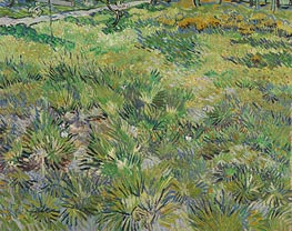 Meadow in the Garden of Saint-Paul Hospital | Vincent van Gogh | Painting Reproduction