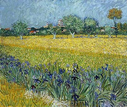 View of Arles with Irises in the Foreground | Vincent van Gogh | Gemälde Reproduktion