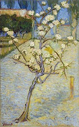 Blossoming Pear Tree | Vincent van Gogh | Gemälde Reproduktion