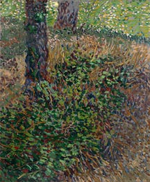 Undergrowth, 1887 by Vincent van Gogh | Painting Reproduction