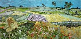 Fields near Auvers | Vincent van Gogh | veraltet
