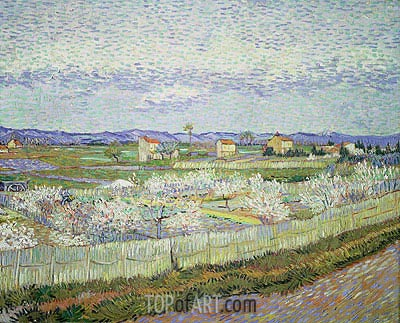 Peach Blossom in the Crau, 1889 | Vincent van Gogh| Painting Reproduction