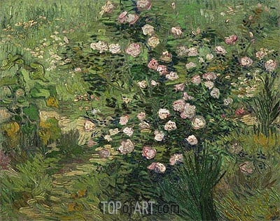Rosebush in Blossom, 1889 | Vincent van Gogh | Painting Reproduction