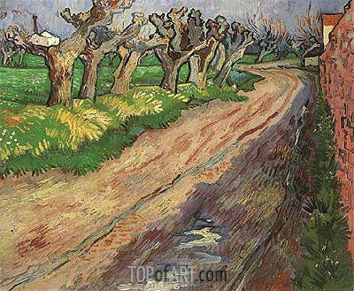 Pollard Willows, 1889 | Vincent van Gogh | Painting Reproduction