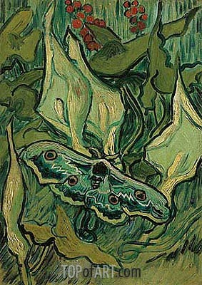 Emperor Moth, 1889 | Vincent van Gogh | Painting Reproduction
