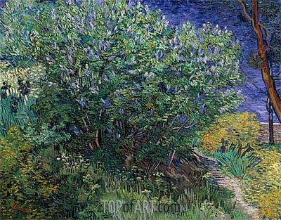 Lilac Bush (Lilacs), 1889 | Vincent van Gogh | Painting Reproduction