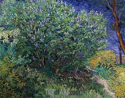 Vincent van Gogh | Lilac Bush (Lilacs), 1889