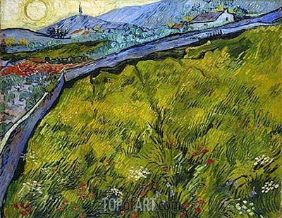 Field of Spring Wheat at Sunrise, 1889 | Vincent van Gogh| Painting Reproduction