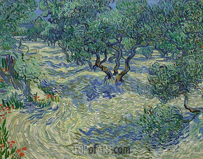Olive Orchard, 1889 | Vincent van Gogh| Painting Reproduction