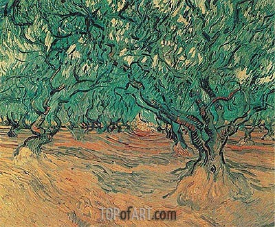 Olive Trees, 1889 | Vincent van Gogh| Painting Reproduction